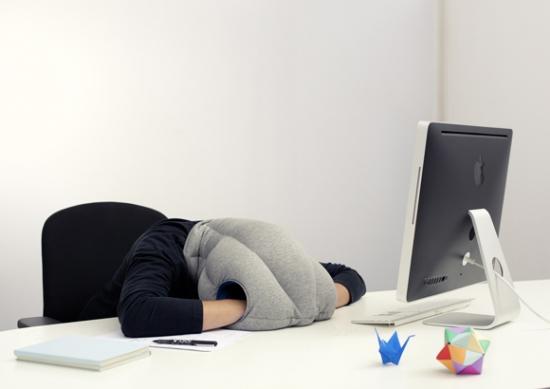 struisvogelkussen_slapen_op_het_werk_1